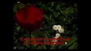 Червени устни (караоке)