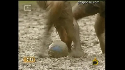 Футбол в кал