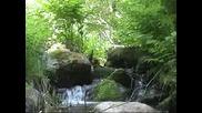 Докосни Природата