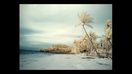 Juju & Jordash - Tattoo's Island