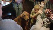 Това детенце смята, че заслужава наградка повече от кучето