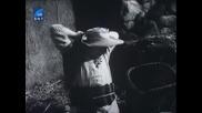 Човекът от Ла Манча Дон Кихот и Санчо Панса