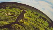 Mike Oldfield - Hergest Ridge 1974 Part 1 Reversed