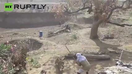 Мъж се защитава с тояга срещу атакуващ леопард