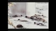 Хирошима на Следващия ден