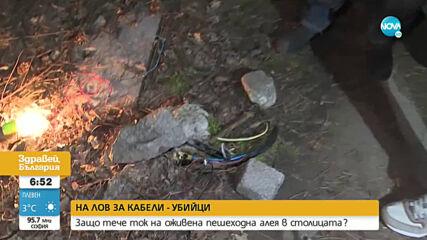 """ОТ """"МОЯТА НОВИНА"""": Защо тече ток на оживена пешеходна алея в столицата"""