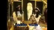Египетско реге - лудница