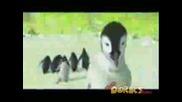 Весели Крачета - Пингвини