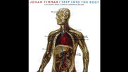 Johan Timman ~ The Hemoglobin (1981)