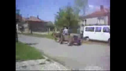 Лесли Каручка
