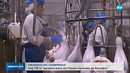 Над 100 тона пилешко със салмонела са дошли на българския пазар