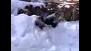 Gmurkane v snega - Stoqnovo
