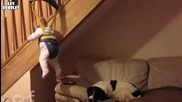 Бебе изпълнява строга мисия ..