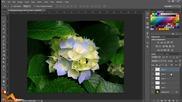 Layers и Adjustments - Photoshop Уроци за Начинаещи Епизод 2