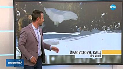 Прогноза за времето (18.02.2020 - обедна емисия)