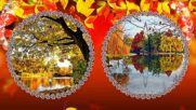 Листопад Переходы Осень часть 2