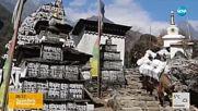 Чистят над 100 т боклук на Еверест