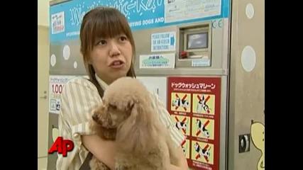 Пералня за кучета