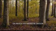 Sergej Cetkovic - 2018 - Ako te nije pronasla ljubav (hq) (bg sub)