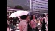 Japanese Umbrellas Kasa or Higasa