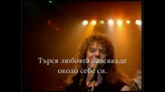 Whitesnake Превод Looking For Love