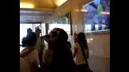 Anahi Y Ucker Отиват Заедно На Летищетоrbd