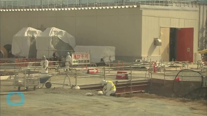 Japan Court Halts Restart of Two Reactors in Blow to Nuclear Sector