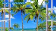 Имам една мечта, че един ден!!! ... ... ( Ocean Breeze) ...