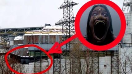 13 Мутирали Животни в Чернобил Заснети на Камера