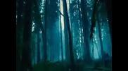 Twilight - Ексклузивна Сцена - The Forest Scene (Високо Качество)(С български субтитри)