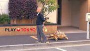 Японец на разходка с домашния любимец .