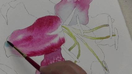 Как да нарисуваме тигрова лилия с акварел, част 1/2 (урок от Ross Barbera)