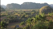 Долината Винялес, Куба - там, където растат пурите...