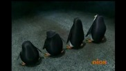 The Penguins Of Madagascar - Stop Bugging Me