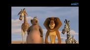 Мадагаскар 2 Бягство към Африка (2008) част 2 Bg Audio Филм
