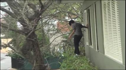 Прегърни дървото, пич!