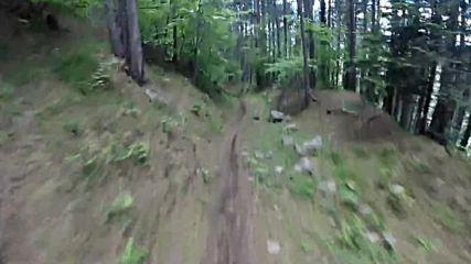 Спускане с колело по трасе Dead Dog | Bansko Mtb