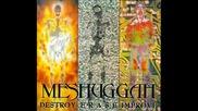 Meshuggah - Acrid Placidity