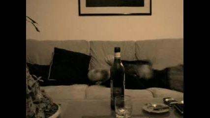 Тупаници В Нощта