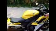 Yamaha R6 2006 - Exhaust