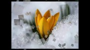 Зимен пейзаж ...