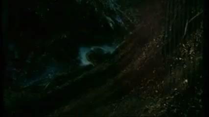 Seedpeople (1992) Trailer