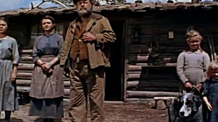 Shane ( 1953 )