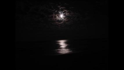 (превод) Joseph Arthur - Honey and the Moon