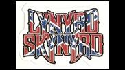 Lynyrd Skynyrd - Mr Banker