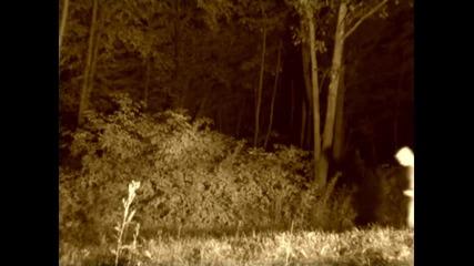 Възбуден призрак броди из гората