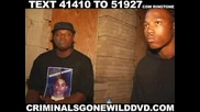 Criminals Gone Wild Dvd [trailer] - Watch