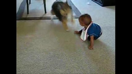Куче Забавлява Бебе - Много Смях!