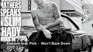 Bgsub! Eminem ft Pink - Wont Back Down 2010