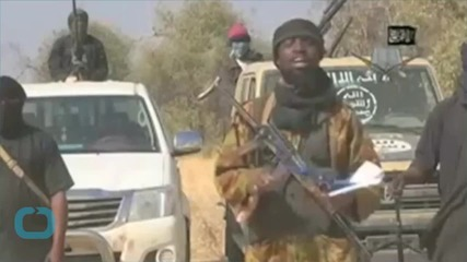 Boko Haram Militants Kill at Least 10 in North Cameroon: Army